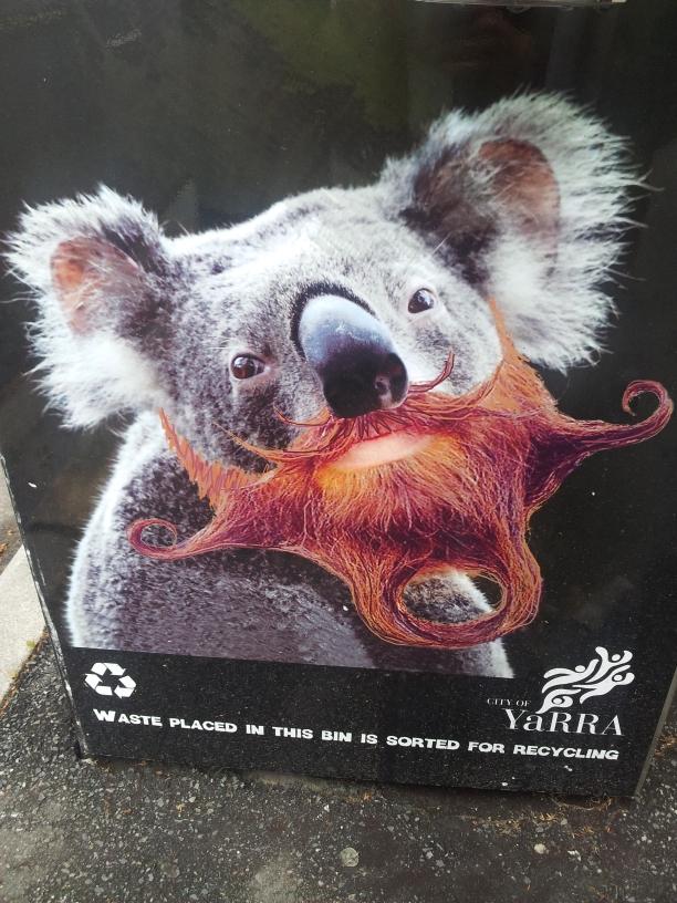 Sur les poubelles de Yarra