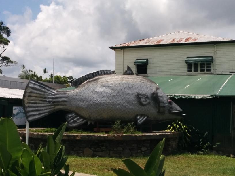 Big Barramundi, Daintree Village, Queensland