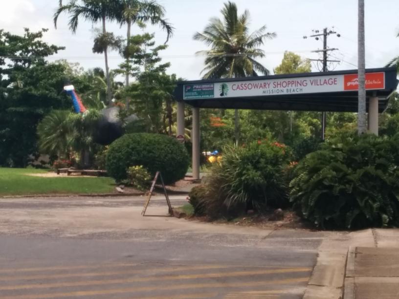 Gros Cassowarie, Mission Beach, Queensland